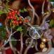 Une sweet table pour un Arbre de Noël gourmand en rouge et blanc
