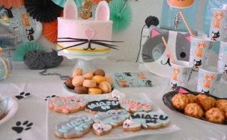 Comment organiser un anniversaire pas cher sur le thème Chat ?