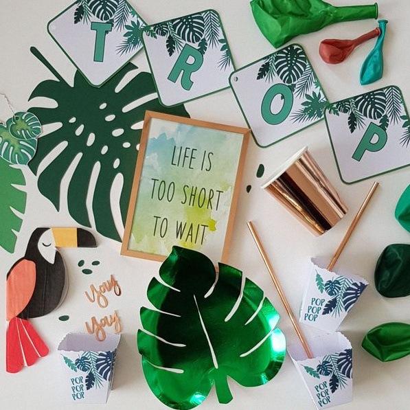 anniversaire tropical party cactus flamingo décoration
